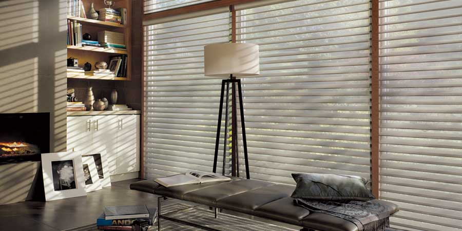 Windows Treatment Blinds